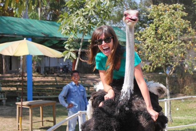 Ostrich Riding-66