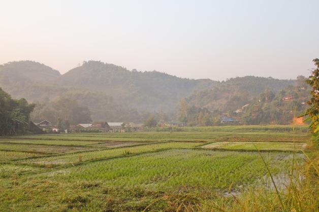 Thailand-190