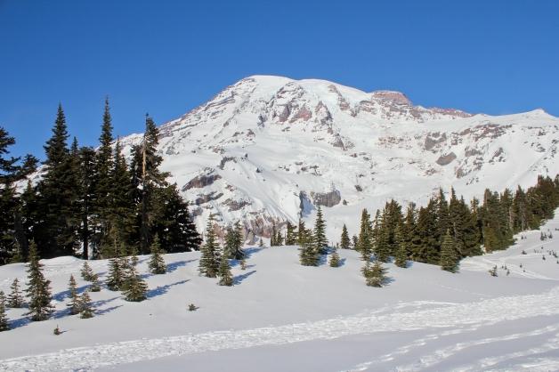 Snowshoeing-10