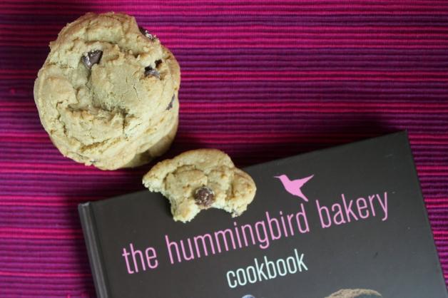 HummingbirdCC-5